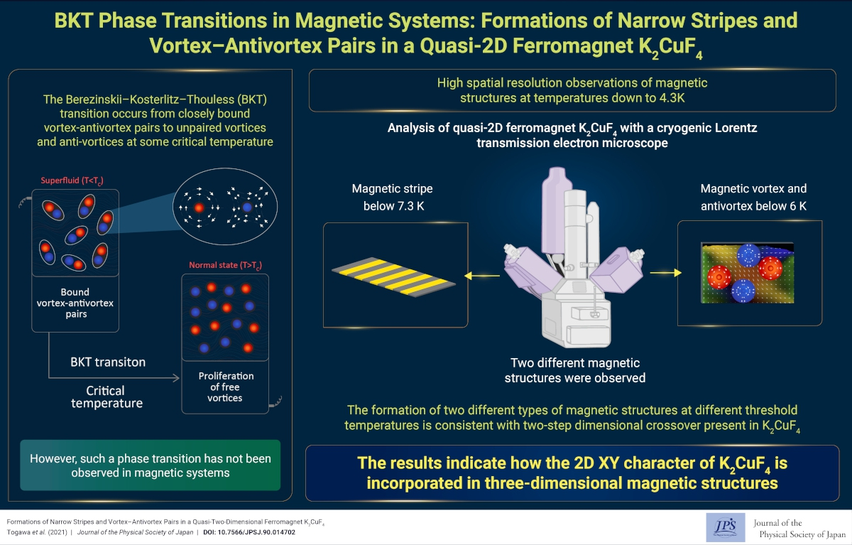 BKT Phase Transitions in Magnetic Systems: Formations of Narrow Stripes and Vortex–Antivortex Pairs in a Quasi-2D Ferromagnet K2CuF4