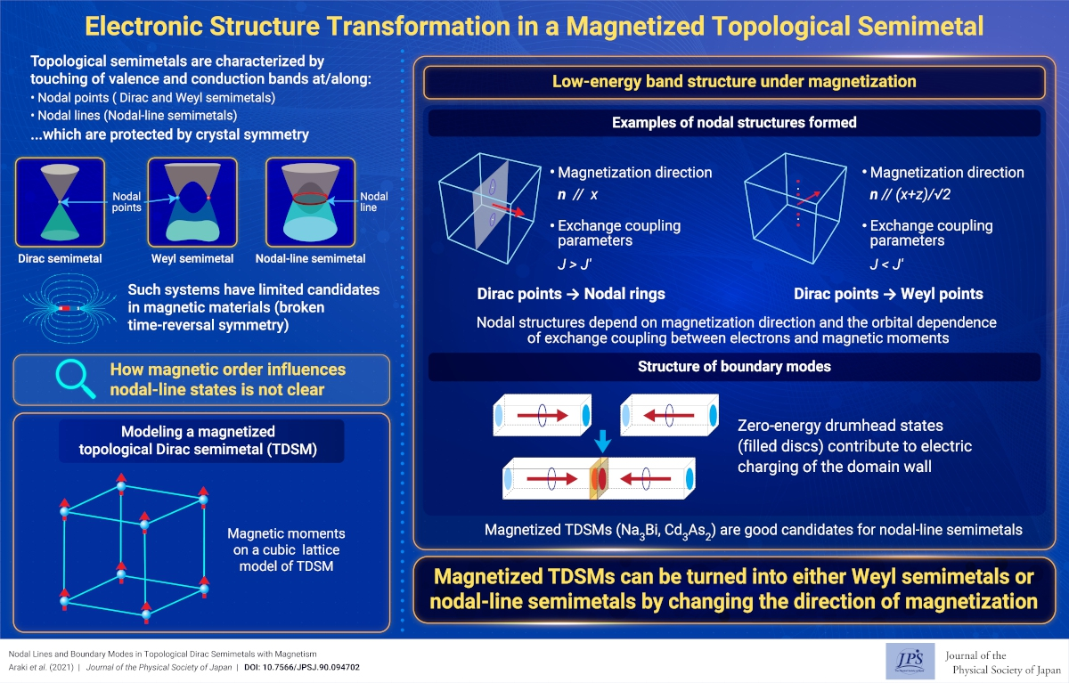 Electronic Structure Transformation in a Magnetized Topological Semimetal